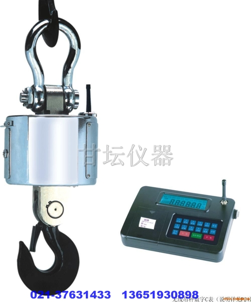 电子吊秤1t-100t 专业销售.木箱包装/出口现货